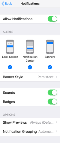 iOS App Notification Settings